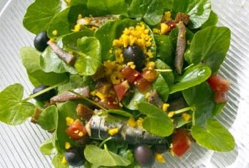 Nizzai mártásos – SalátaBoglárka
