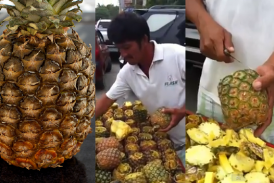 A gyors ananász bontás – Bajnok a csávó :) …