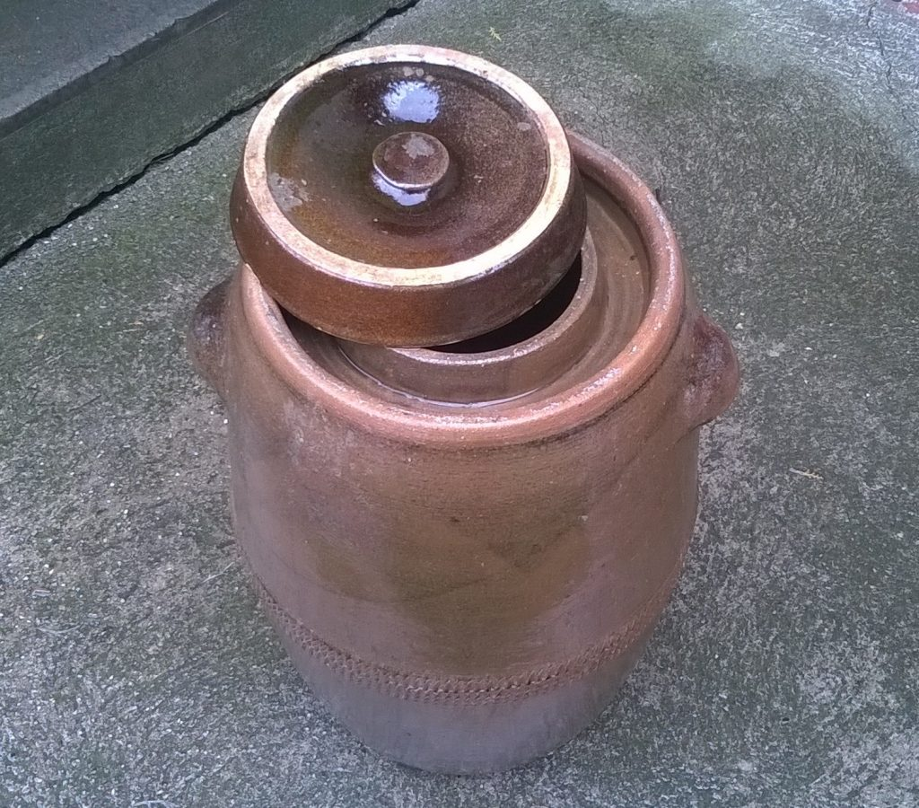 vodros-savanyusag-bedobalos-recpet1