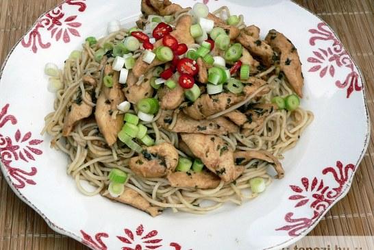 Teriyaki csirke – recept