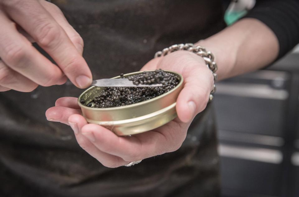 kaviar-beluga-pikanteria