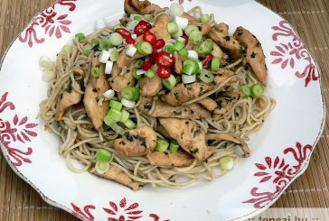 Teriyaki csirke - recept