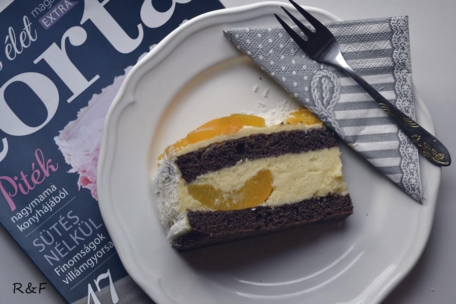 barackos torta7